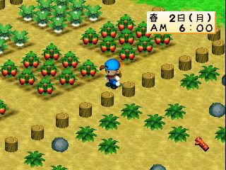 牧場物語 モバイルゲーム マーベラス テンセントゲームズに関連した画像-01