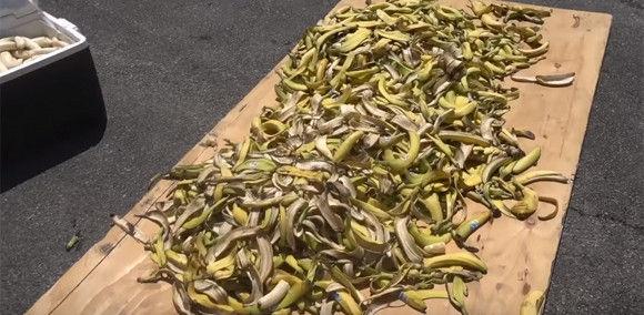 マリオカート バナナ 車 実験 ユーチューバーに関連した画像-05