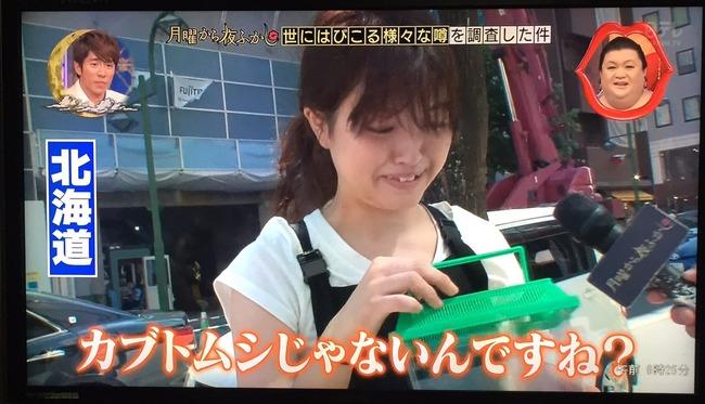 ゴキブリ 北海道民 反応に関連した画像-04