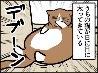 猫のぽんた 鴻池剛 ぬいぐるみ まくら クッション 漫画 4コマまんが ツイッターに関連した画像-01