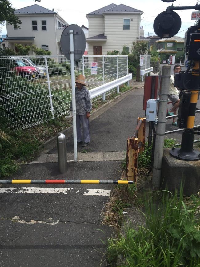 小田急線 ジャガイモ 遅延に関連した画像-04