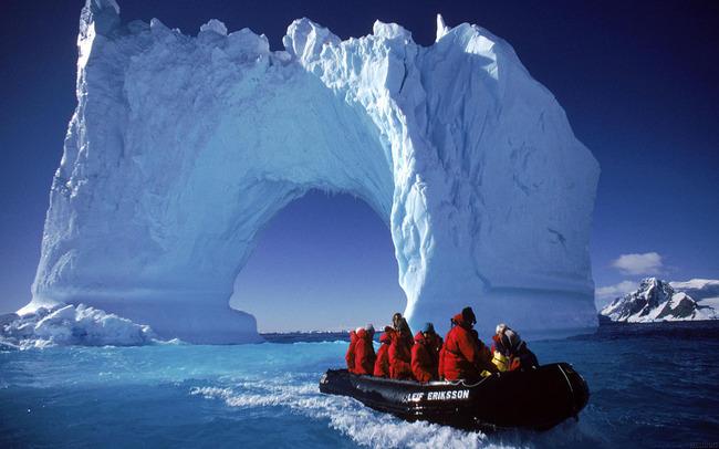 南極 木 化石に関連した画像-01