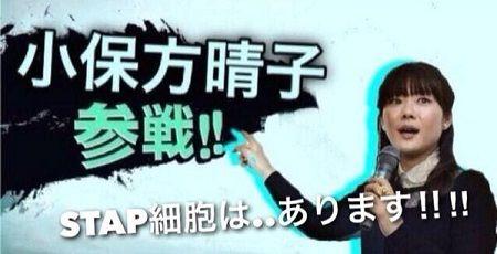 小保方晴子 STAP細胞 博士号に関連した画像-01