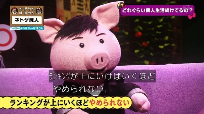 ネトゲ ネトゲ廃人 NHK 特集 ねほりんぱほりんに関連した画像-22