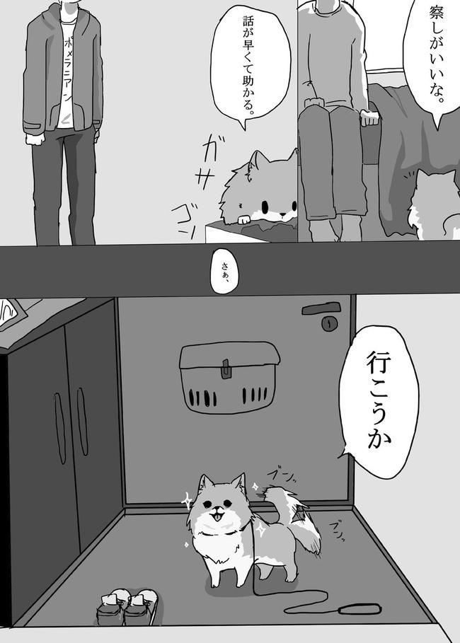 大塚明夫 ポメラニアン アニメ化に関連した画像-05