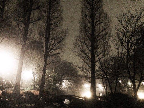 神秘的 濃霧 東京 首都圏 RPG ラストダンジョン ホラー 夜景に関連した画像-13