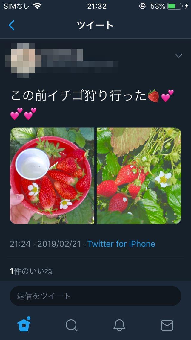 イチゴ狩り 花摘み インスタ映えに関連した画像-02
