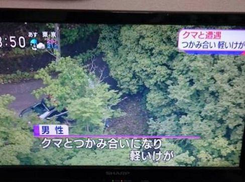 日本人 人間離れに関連した画像-03