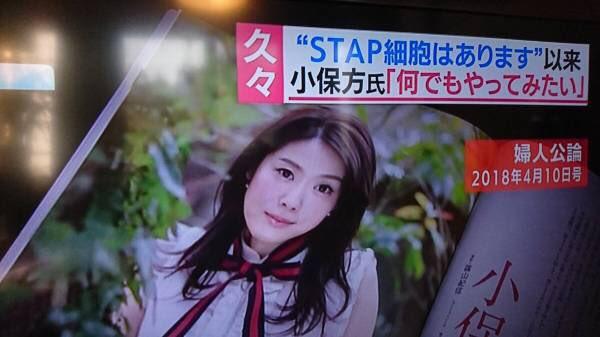 小保方晴子 綺麗 別人に関連した画像-02