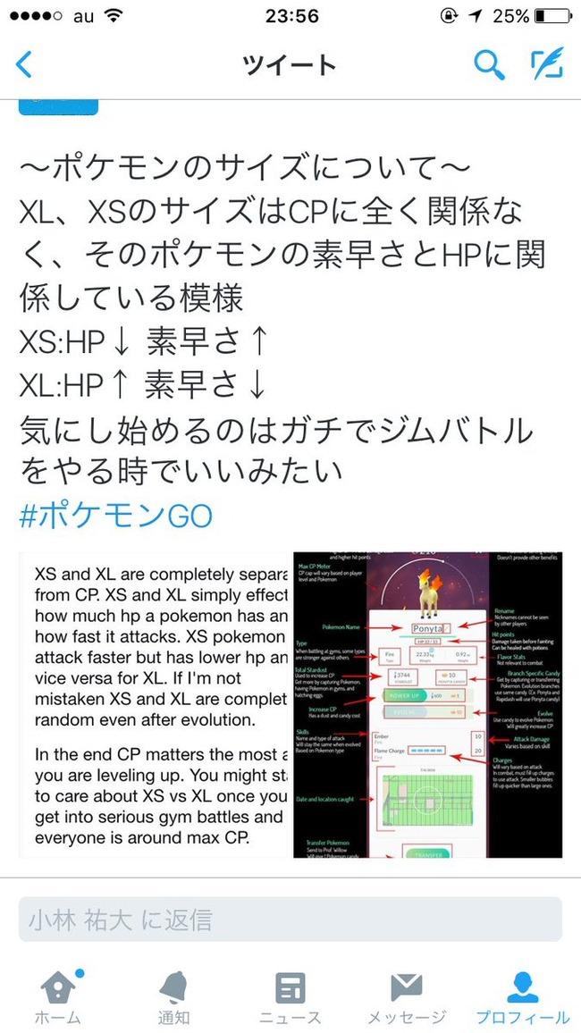 攻略 ポケモンGO ポケモン ボーナス 上級者 ボール 投げ方 バッテリー 節約 アカウント 退会 削除 個体値に関連した画像-09