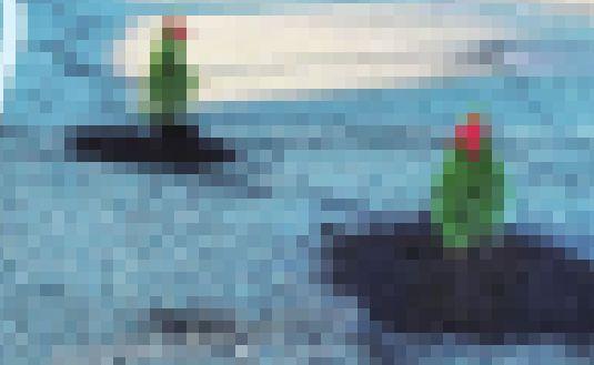男 車道 クリスマスツリー 植える 事件 衝撃 理由 素敵に関連した画像-01