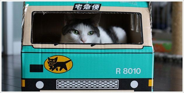 ヤマト運輸 宅急便 クロネコヤマトに関連した画像-01