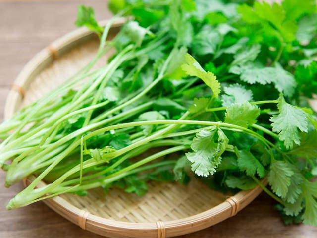 【衝撃】クソまずい事で流行中の「パクチー」、ベトナムではただの「○○○○」だったと判明!今まで食べてきたのは何だったのかwwwww