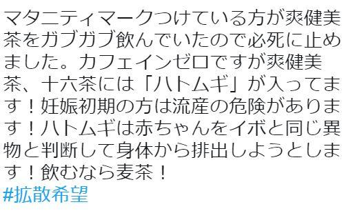 マタニティ 妊婦 爽健美茶 ハトムギ 妊娠 流産に関連した画像-02