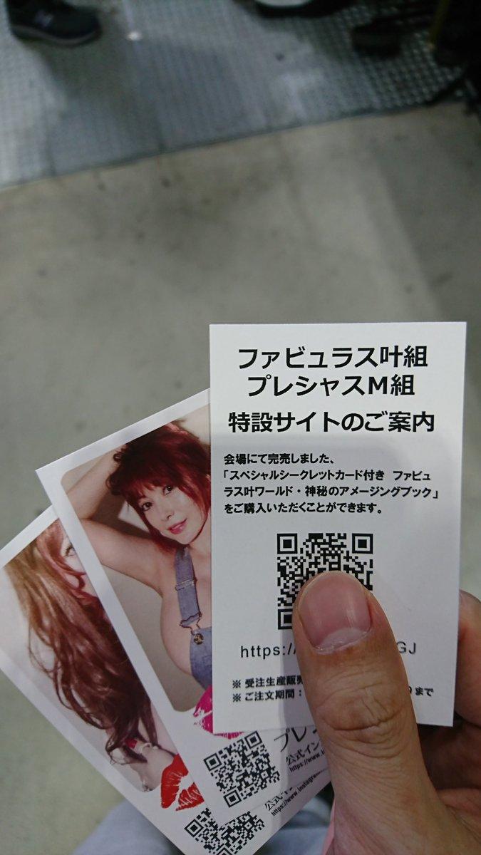 叶姉妹 夏コミ 通販 受注生産 ファビュラス 転売に関連した画像-02