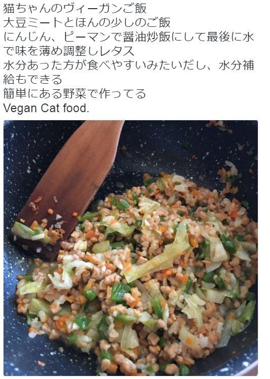 ベジタリアン ヴィーガン ネコ 菜食主義 ペット 虐待に関連した画像-01