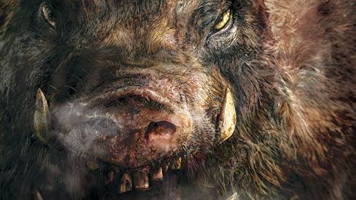 イノシシ 犬 イタリアに関連した画像-01