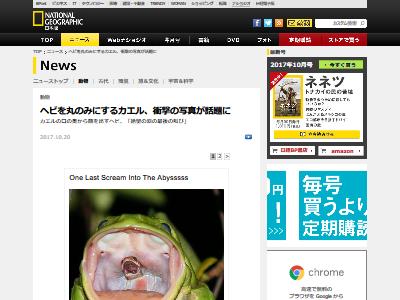 カエル ヘビ 丸呑みに関連した画像-02