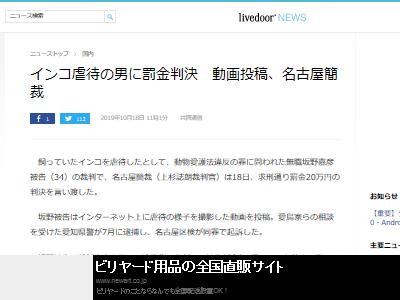 虐待 動画 インコ