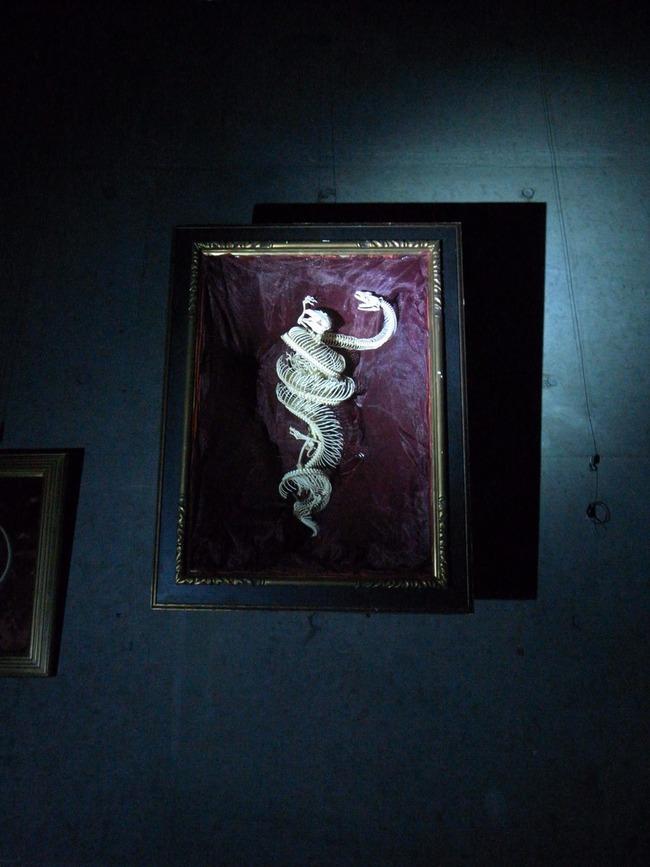 ケンタッキー キングギドラ ケンタギドラ 職人 テレビ局 依頼 報酬 1万円 骨オヤジに関連した画像-09