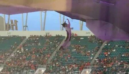 猫 落下 スタジアム アメリカンフットボール アメリカ トラブルに関連した画像-01