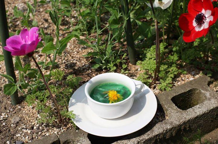 福島 野菜 アート パフォーマンスに関連した画像-03