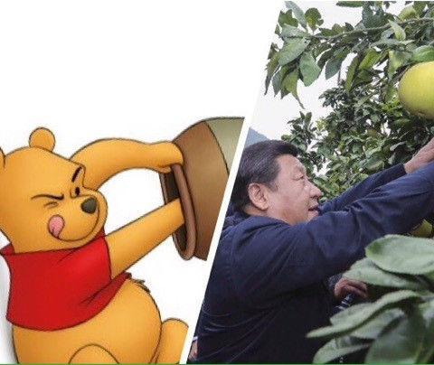 中国 習近平 くまのプーさん 検閲に関連した画像-07