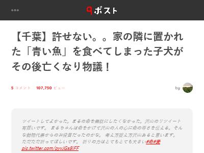 千葉県 東金市 子犬 死亡 毒餌 青い魚に関連した画像-02