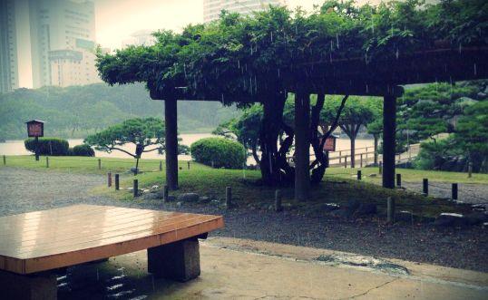 雨上がり 地面 匂い ロマンチック 正式名称 ペトリコールに関連した画像-01