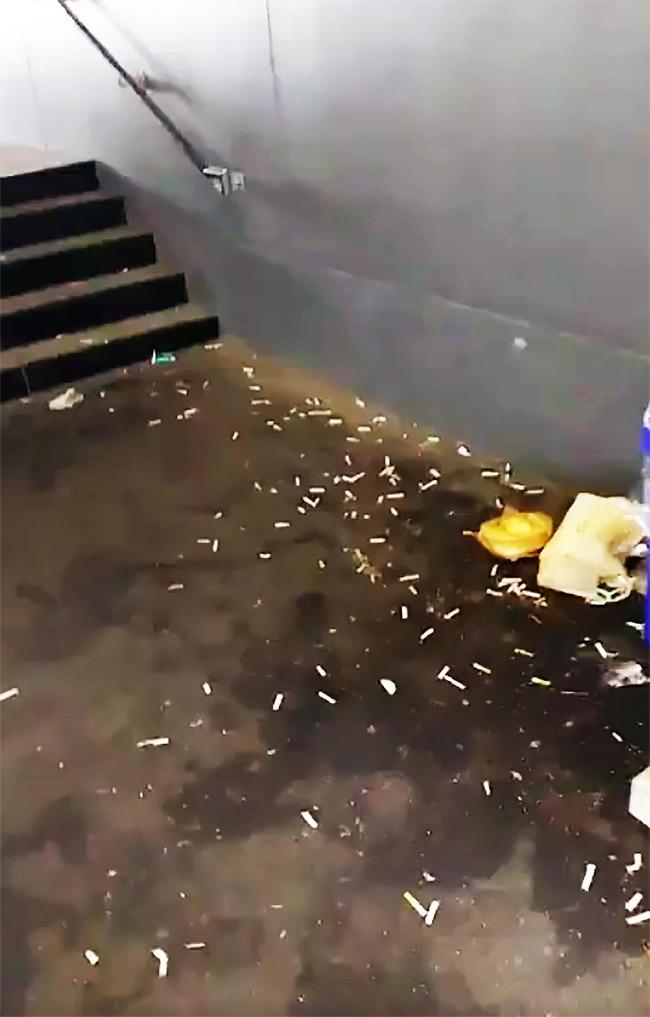 豊洲市場 タバコ ポイ捨て マナー ニコチン汚染に関連した画像-04