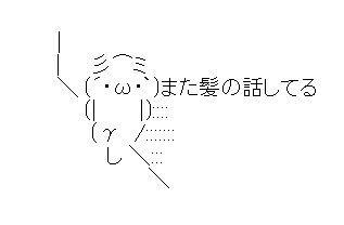 相撲 ハゲに関連した画像-01