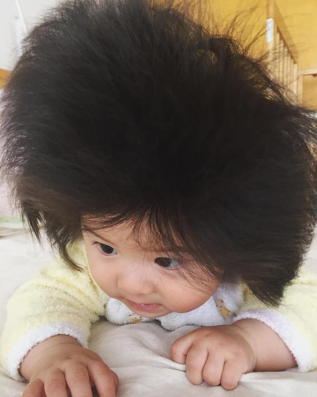 赤ちゃん フサフサ babychancoに関連した画像-05