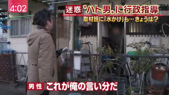 記者 鳩 餌やりおじさん 愛知に関連した画像-03