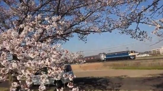 撮り鉄 車 ブチギレに関連した画像-07