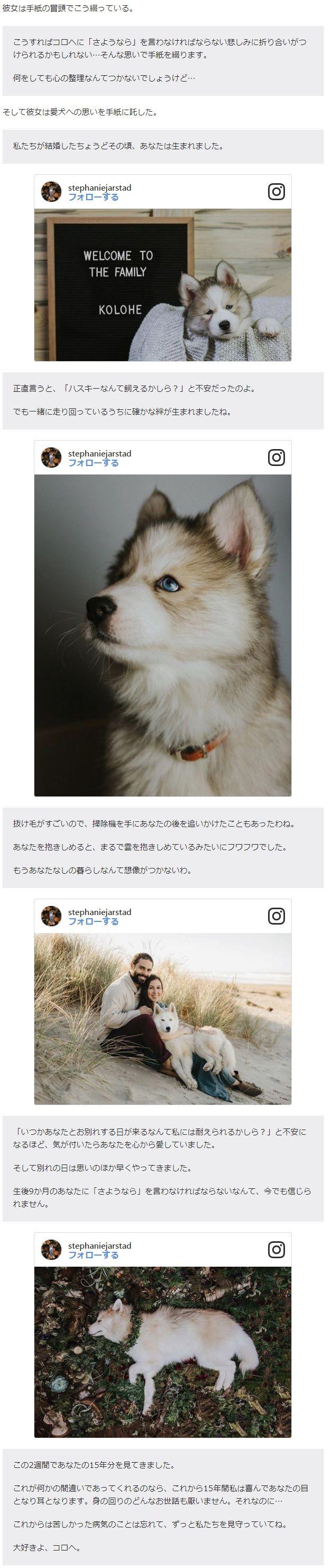 愛犬 手紙 感動 泣けるに関連した画像-03