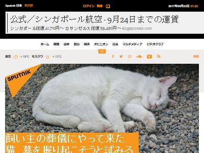 猫 飼い主 墓 掘り起こす 動画に関連した画像-02