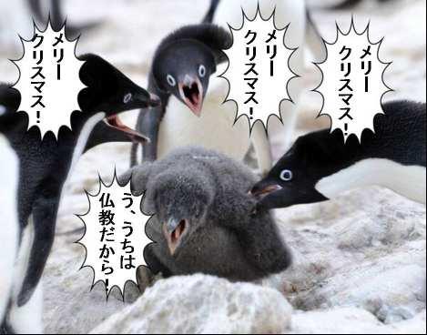 日本 クリスマス 外国人に関連した画像-01