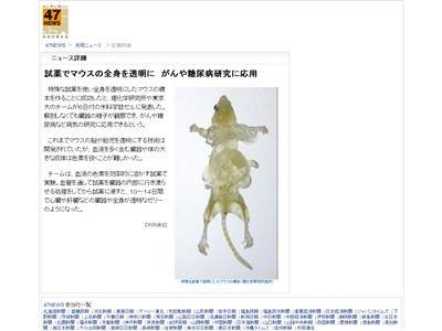 閲覧注意 透明 マウスに関連した画像-02