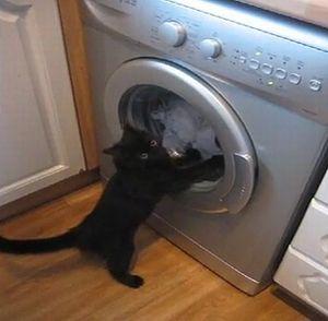 ドラム式 洗濯機に関連した画像-01