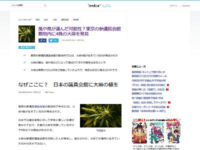 東京 参議院議員会館 大麻に関連した画像-02