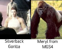 メリルとゴリさん
