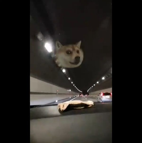 柴犬ポーチ ダッシュボード HUDに関連した画像-06