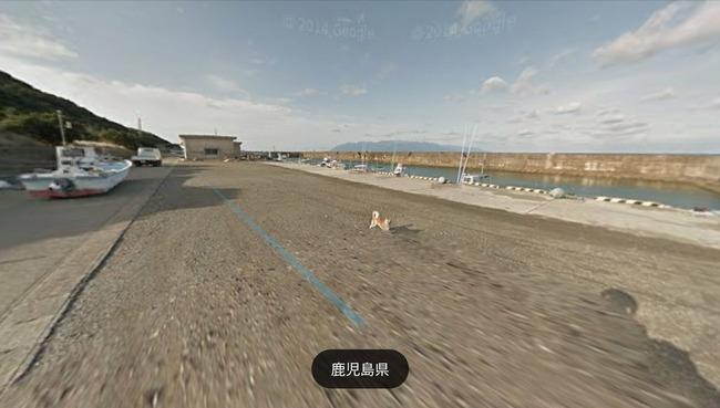 グーグル google ストリートビュー 犬 イッヌに関連した画像-06