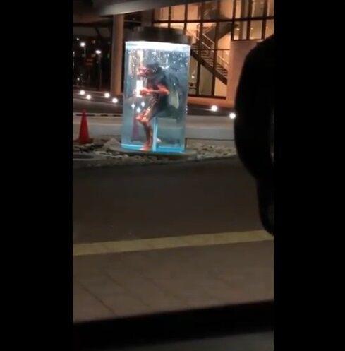 福崎駅 カッパ 不気味に関連した画像-05