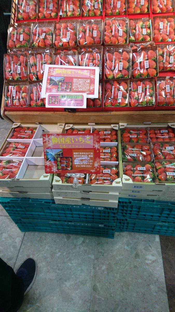 韓国産いちご ソリャン ソルヒャン 雪香 盗み パクリ 流出 日本 イオン 輸入に関連した画像-03