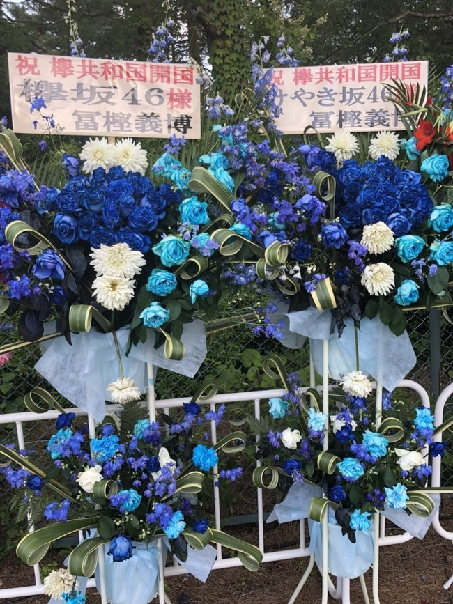 冨樫義博 欅坂 ライブに関連した画像-03