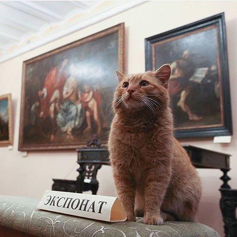 エイプリルフール 猫 従業員 本当 美術館 ロシアに関連した画像-03