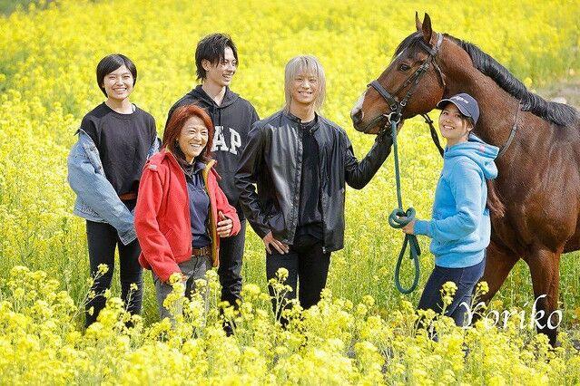 志村どうぶつ園 白井家 愛馬 バラバラ 違法解体に関連した画像-03