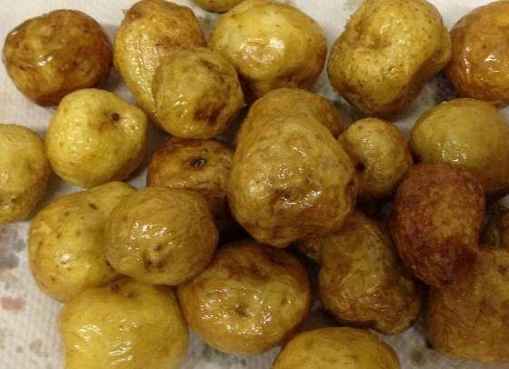 芋 ジャガイモ フライドポテト ポテト 専門店 イオン 沖縄 茨城に関連した画像-01