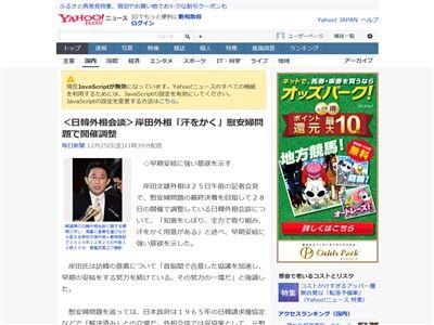 慰安婦 韓国 日韓外相会談に関連した画像-02
